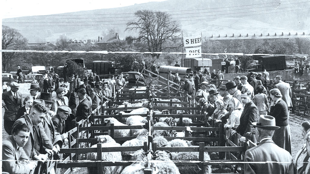 PICTURE GALLERY: Retro snapshots of British farming down the years