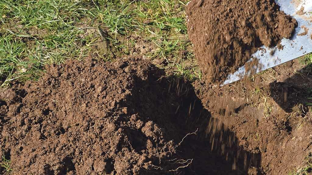 Understanding the soil microbial community