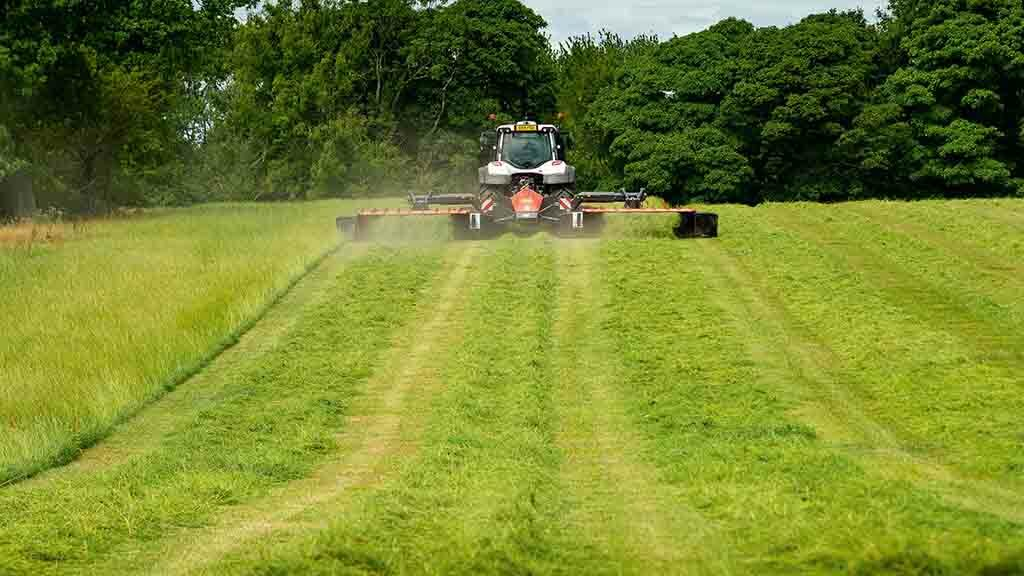 Reducing silage waste: How silage and grazing can be better used