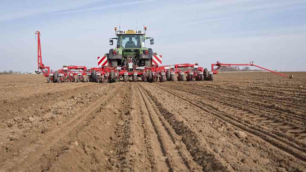Ideal drilling conditions for sugar beet with 50-60 per cent planted
