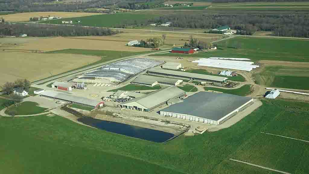 Rosy-Lane Holsteins in Wisconsin comprises a milking herd of 1,100 Holstein cows and 790 heifers