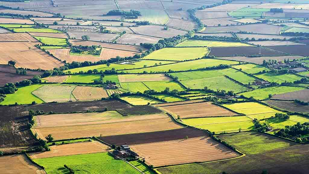 Farmers in limbo as Covid-19 causes Countryside Stewardship backlog