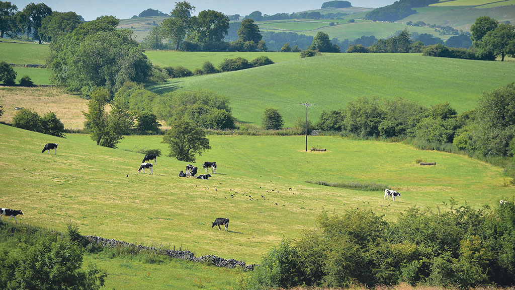 'There is a serious risk that without action the countryside will fall behind'