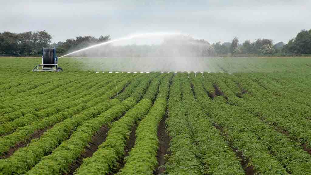 Irrigation prospects for 2019 downgraded by The Environment Agency