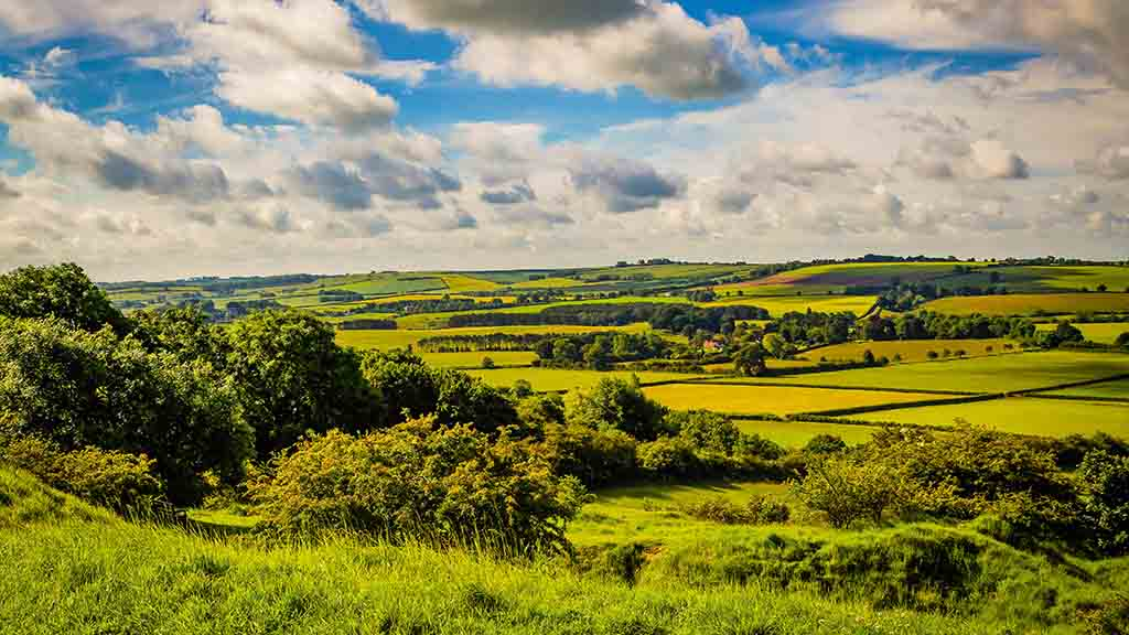 Developing a sale strategy for your land: What British farmers need to know