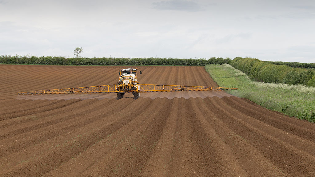 Bayer's new herbicide authorised for potatoes and gains EAMUs