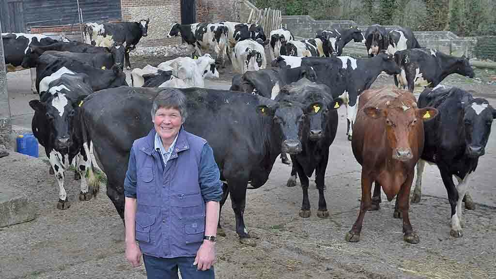Backbone of Britain: The highs and lows of working 50 years in the dairy industry