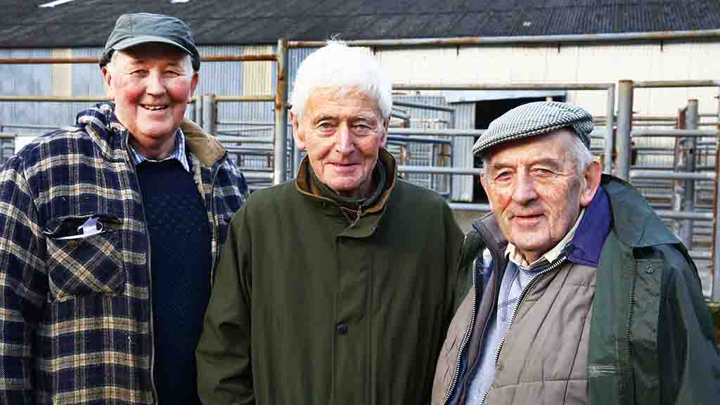 Farm profile: Three brothers make history and take on presidency of Welsh Black Cattle Society