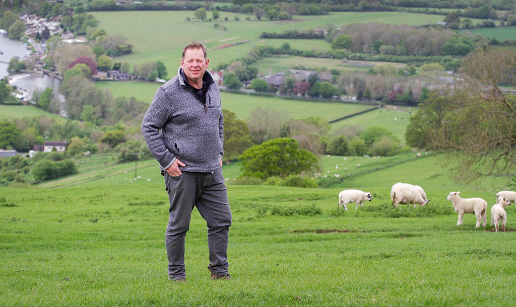 Sheep special: Precision pays when producing finishing lambs