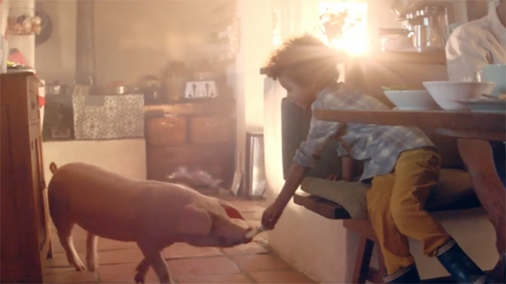 Amazon agrees to change waste food ad after National Pig Association complaint