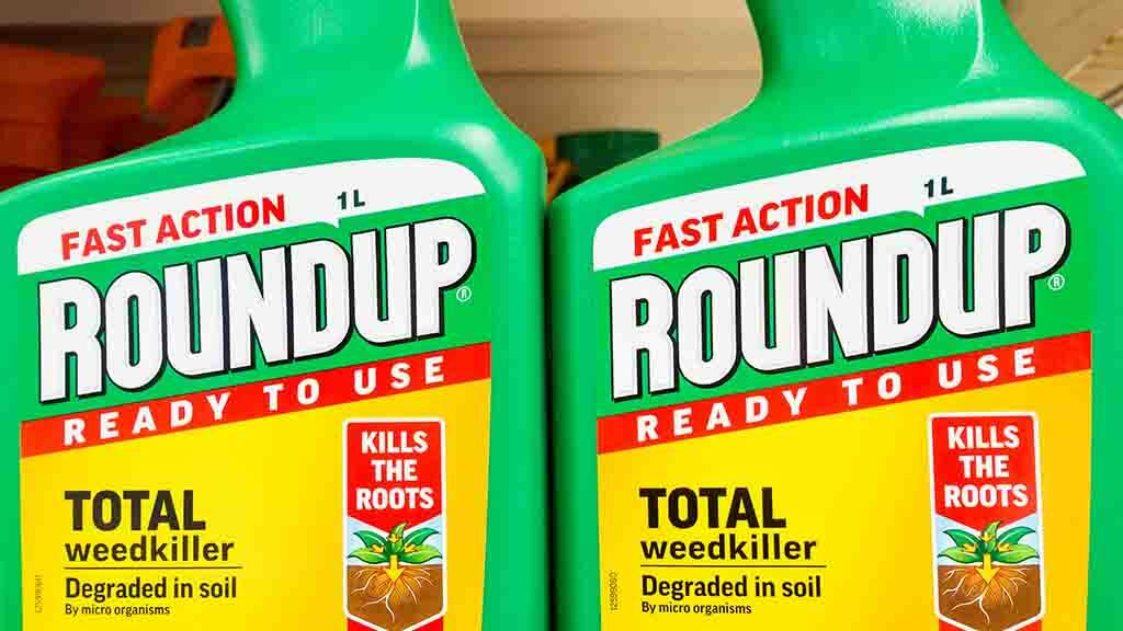 Bayer to appeal court's decision to award $2bn damages in Roundup cancer claim