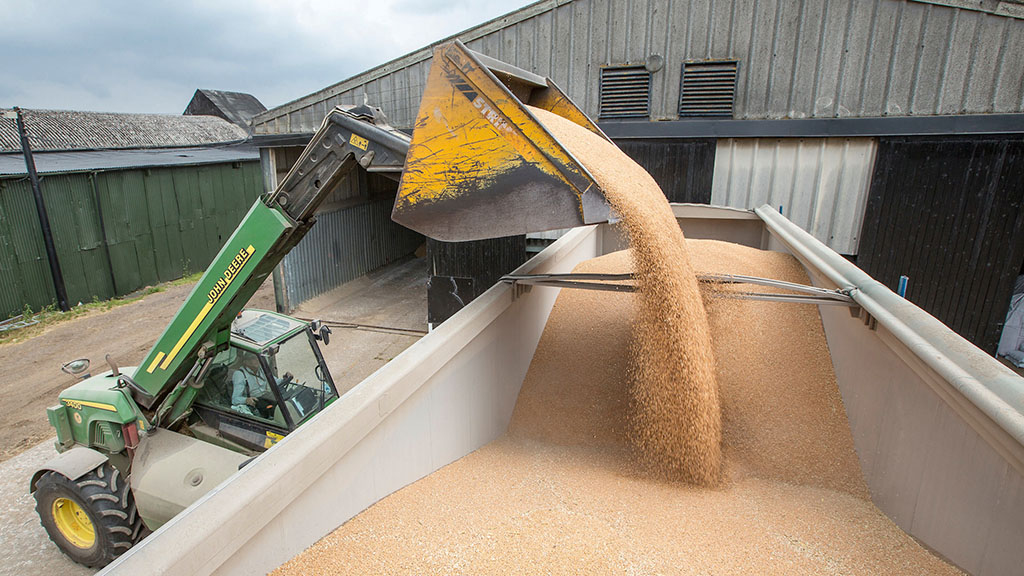 An eye on the grain market - June 6 update