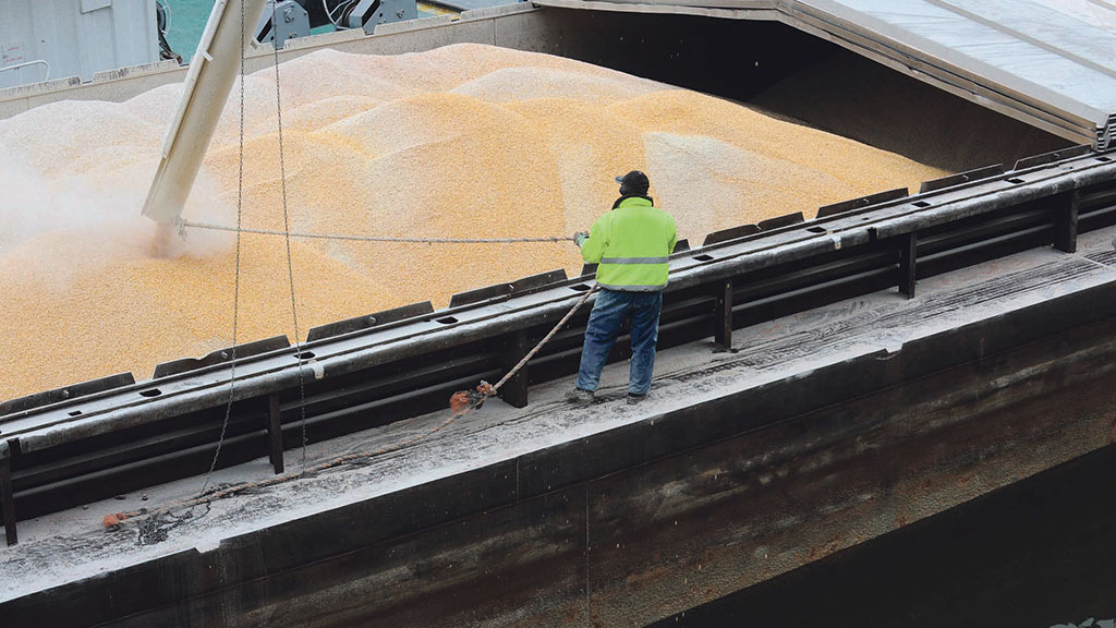 Grain prices drop back in UK as Brexit uncertainty adds to market unease