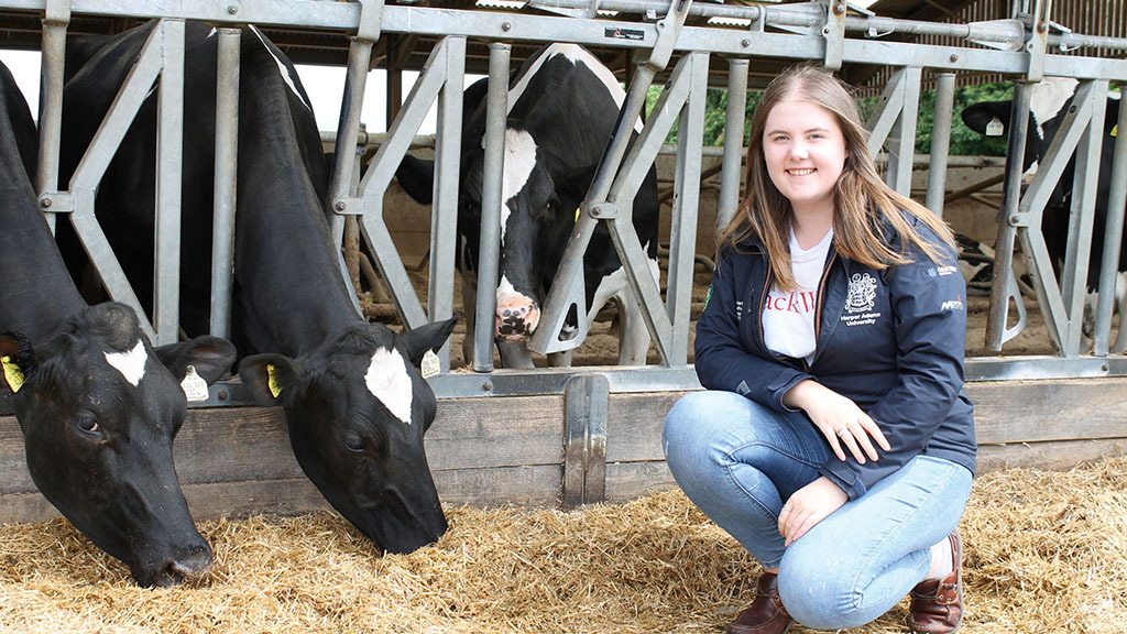 Young Farmer Focus: Imogen Christmas - 'Even with a lack of experience, there are so many opportunities'