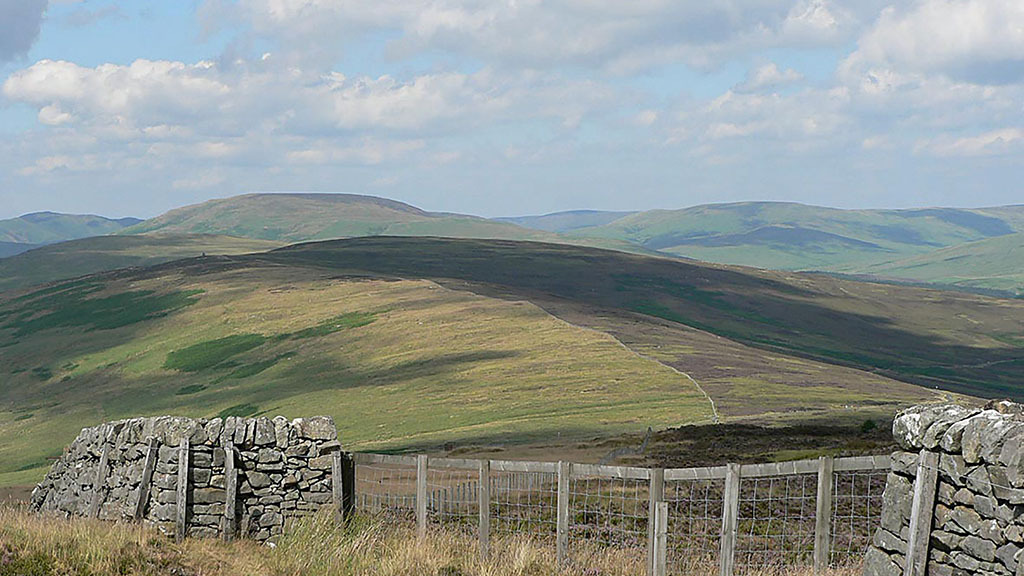 Buccleuch looks to offload 10,000ha of land in the Scottish Borders