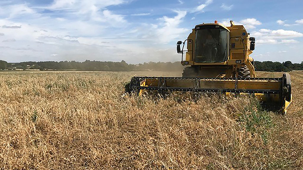 Farm safety: Top tips for staying safe on-farm this harvest season