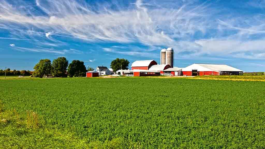 Global Ag View: Trade wars hitting American machinery industry