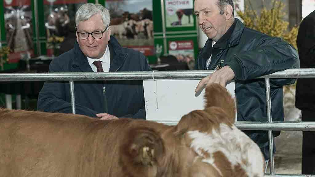 Fergus Ewing 'determined' to stop fall in Scottish beef herd numbers