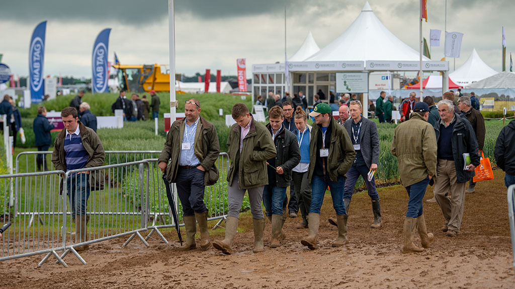Cereals 2019: High yielding feed wheat varieties stand up well