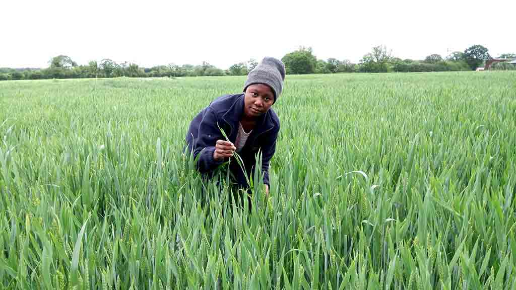 Young Farmer Focus: Ramatu Saaka – 'In Ghana, farming is seen as a job for the illiterate'