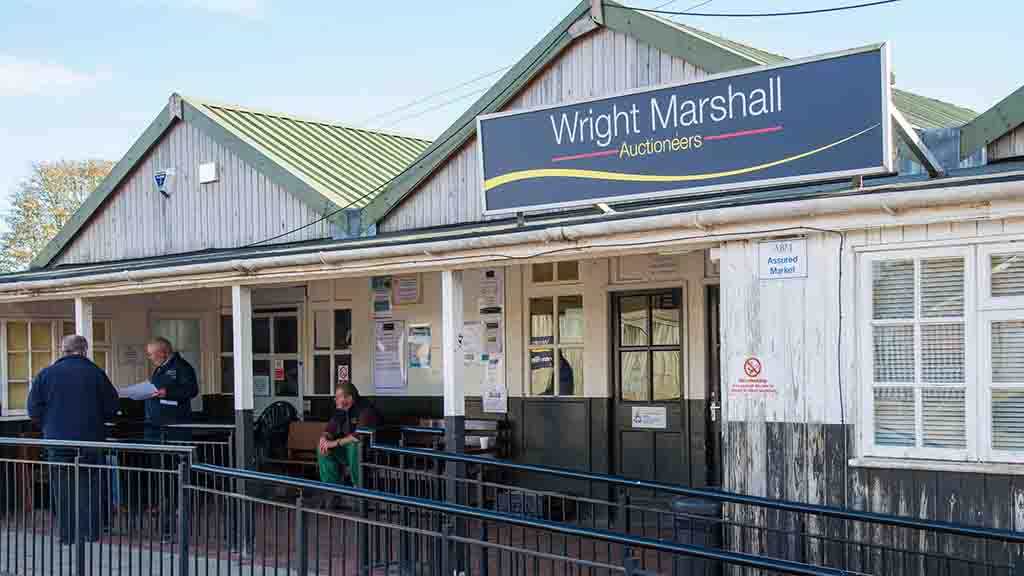 Wright Marshall cancels Monday sale