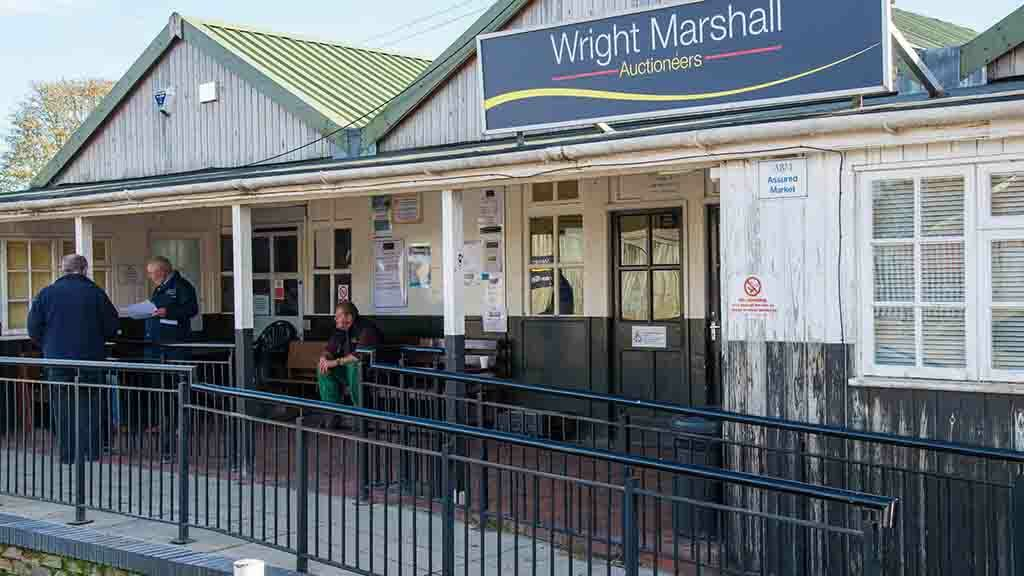 Wright Marshall real estate business bought out of administration