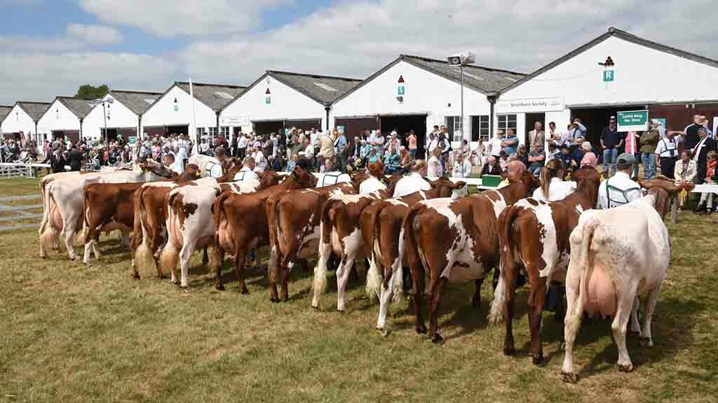 Everything you need to know about the Great Yorkshire Show 2019
