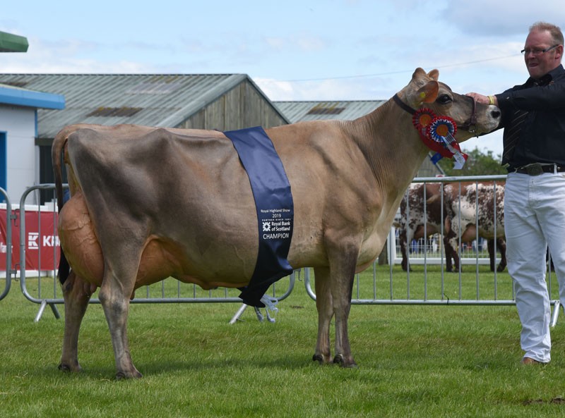 Reserve inter-breed champion, Clifton Vanahlem Clover, from Robbie Scott, Ayrshire