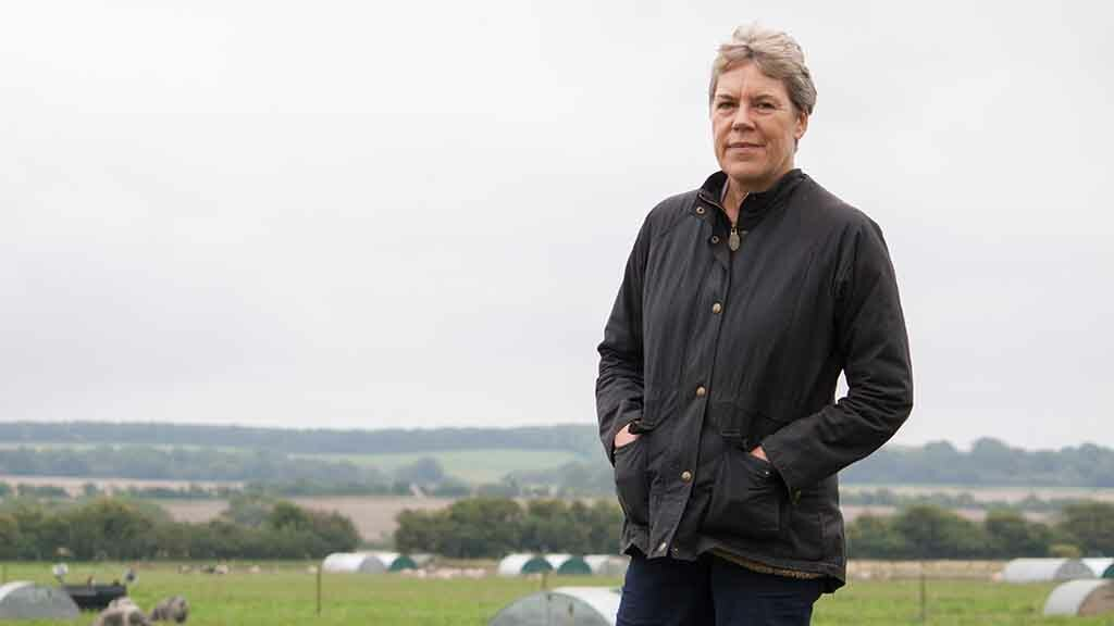 Government must incentivise sustainable farming by serving organic, British food