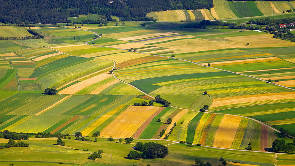 Global Ag View: Austria becomes first EU country to ban glyphosate