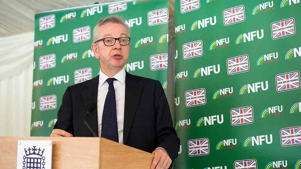 Mercosur deal shows remaining in EU was no guarantee on standards being upheld - Gove