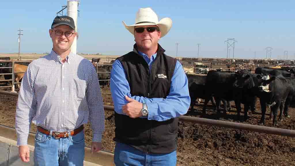 Global Ag View: US ranchers take hard stance on growth promoters