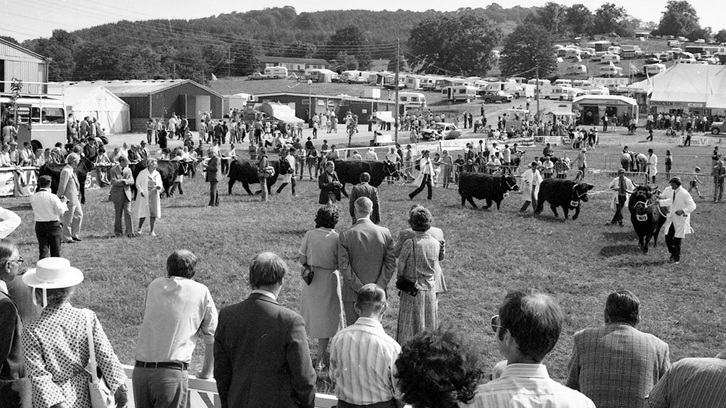 Everything you need to know about the 100th Royal Welsh Show