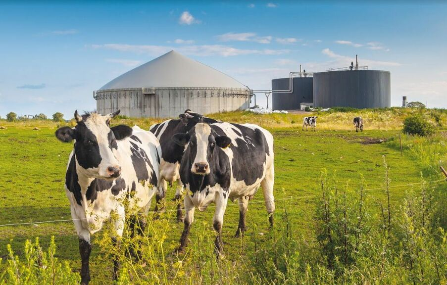 AD transforms animal by-products into nutrient-rich digestate