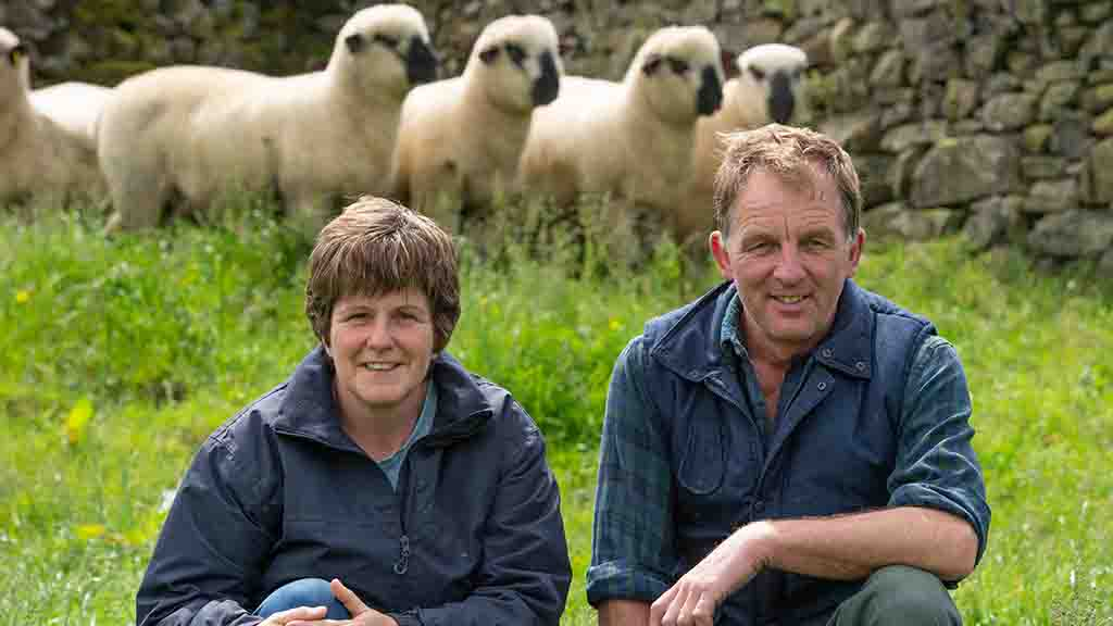 Sheep special: Fast finishing Hampshire Downs suit family farm