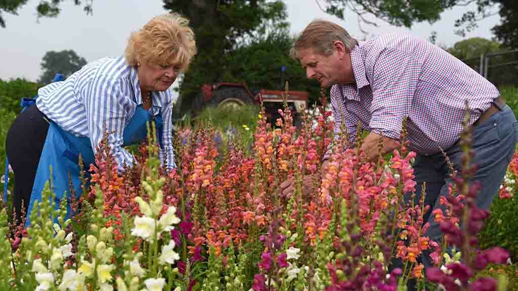 Yorkshire family farm grows flowers to help support next generation