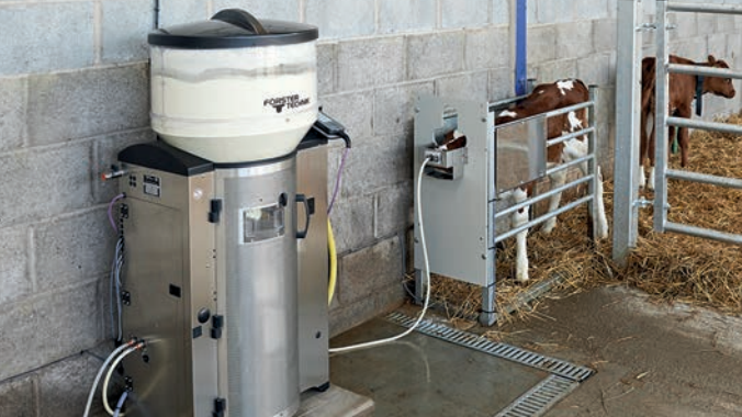 Selecting the right calf milk replacer is vital