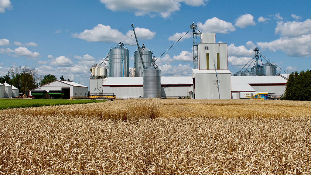 Global Ag View: Thriving market for cereal growers as brewing boom hits Canada