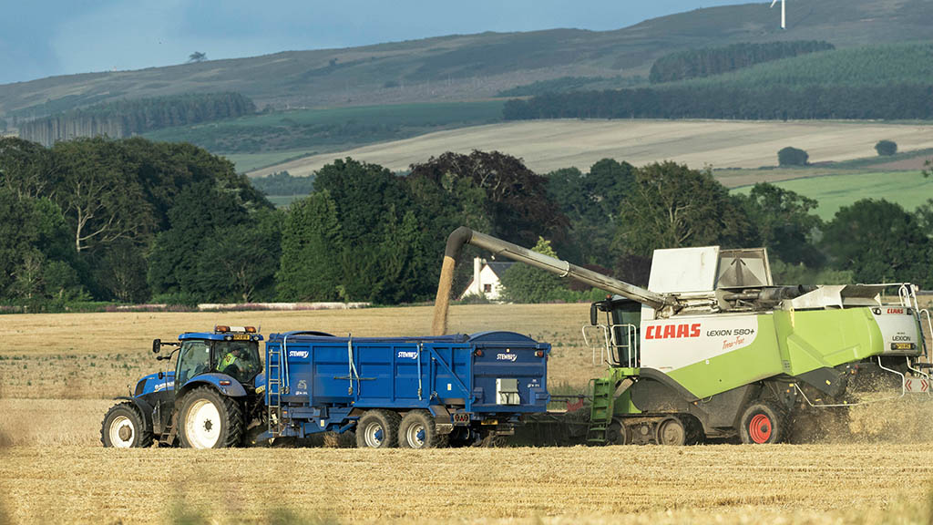 Early Scottish harvest signs encouraging in terms of yield and quality