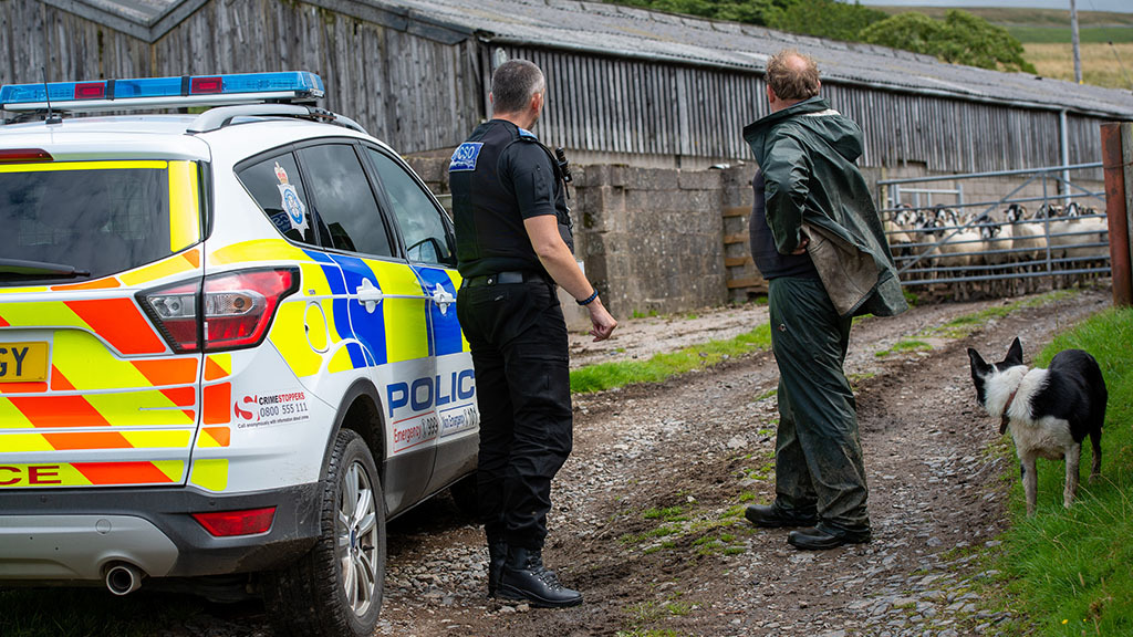 Jail for trio who illegally butchered 350 sheep in 'barbaric' crime spree