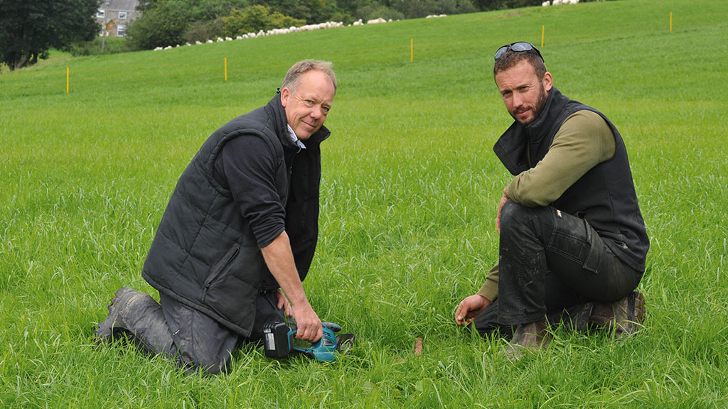 Nutrient management: How to get the best out of grass with a reseeding plan