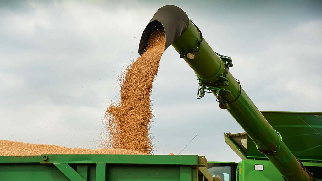 Wheat markets look to exports as two million tonnes earmarked for shipping