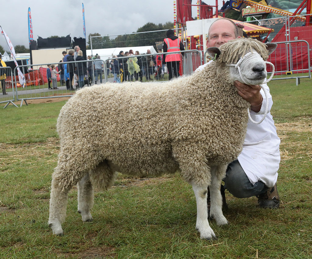 Inter-breed sheep champion, the Leicester Longwool, Astcote Kingfisher, from Chris Sander.