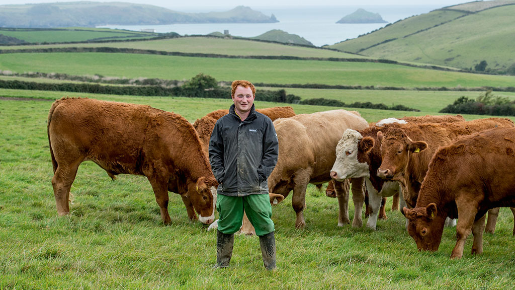 How two farmers are maximising returns on a grass-based finishing system