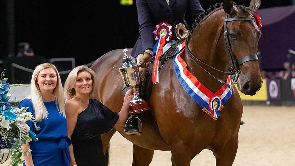 Twinshock Warrior reigns supreme at the Horse of the Year Show