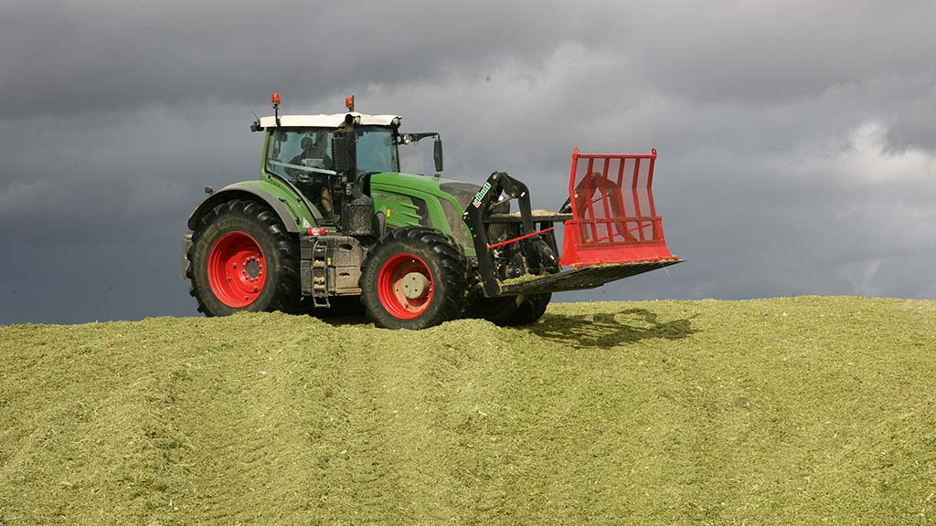 Maximize exceptional feed potential with a timely harvest