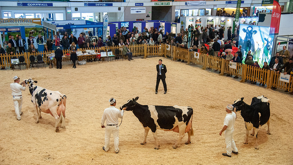 There will be no livestock classes at this year's Dairy Show (2019 event pictured)