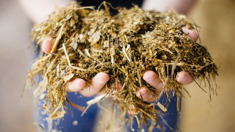 Reduce feed waste to help silage stocks last until turnout