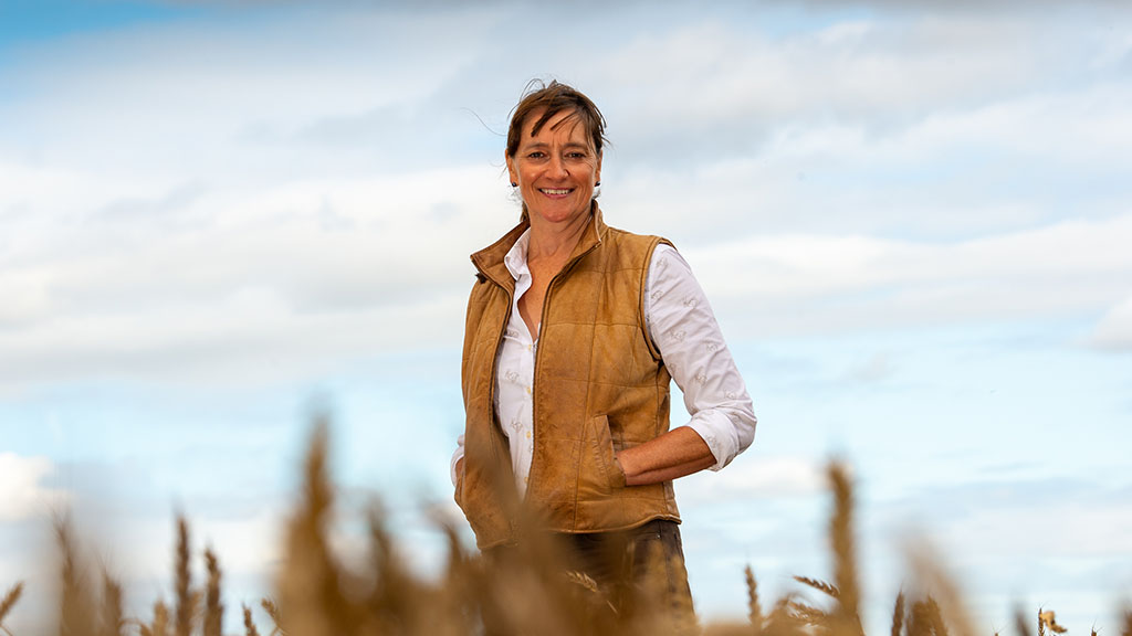 'We can get really good crops of wheat from sowing until the end of the year'