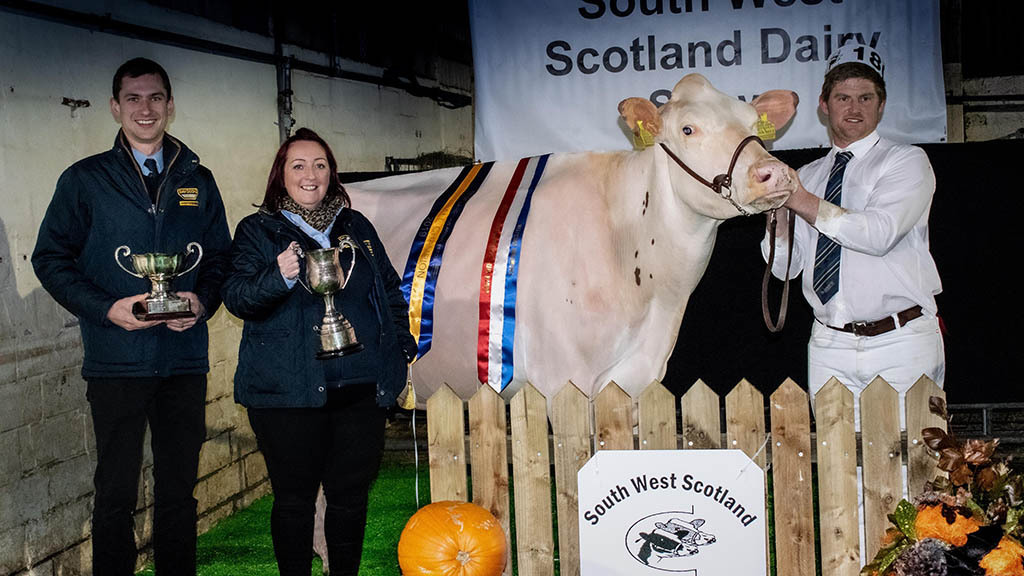 Yates family dominate the Holsteins at South West Scotland Dairy Show